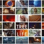 Palma para a Árvore