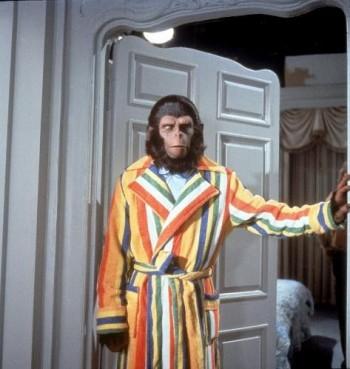 Seja bem-vindo ao nosso especial Planeta dos Macacos...