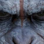 Planeta dos Macacos – O Confronto